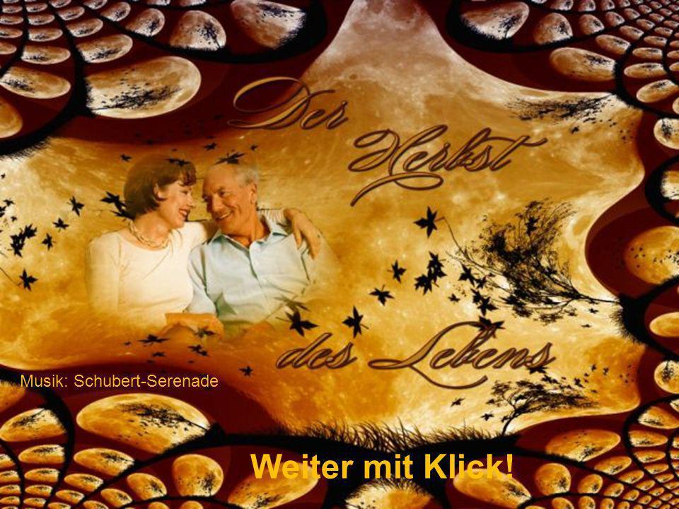 Musik: Schubert-Serenade