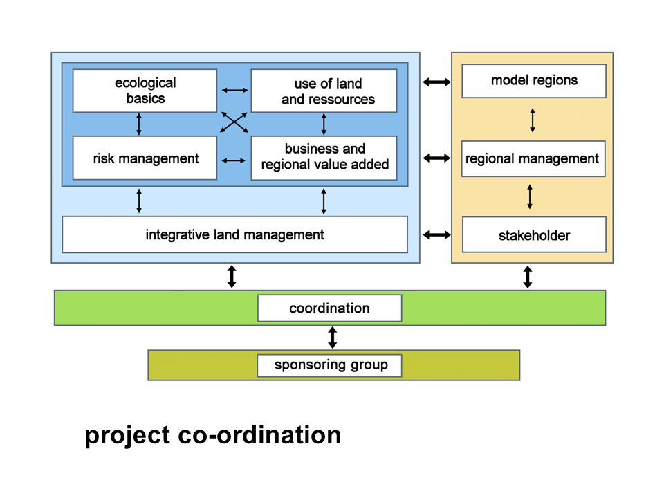 project co-ordination