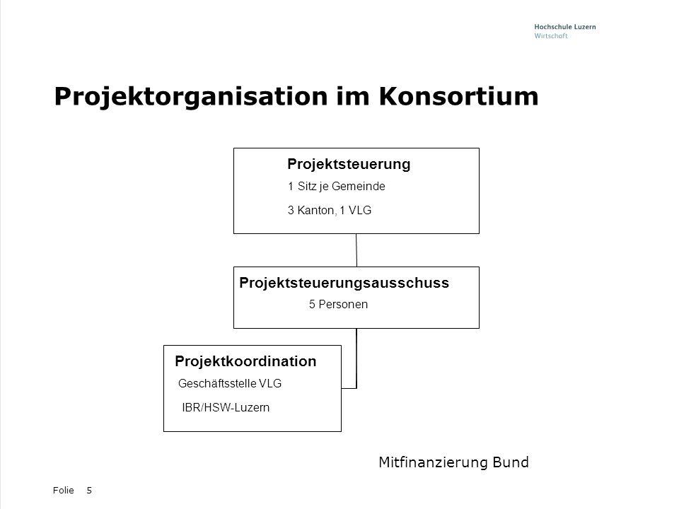 Projektorganisation im Konsortium