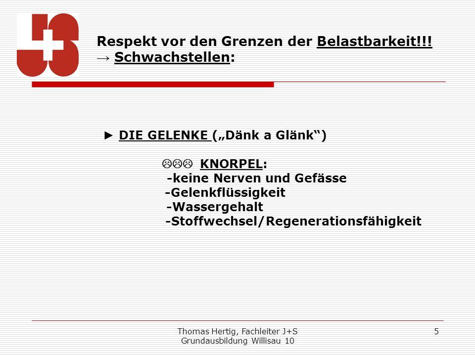 """► DIE GELENKE (""""Dänk a Glänk )"""