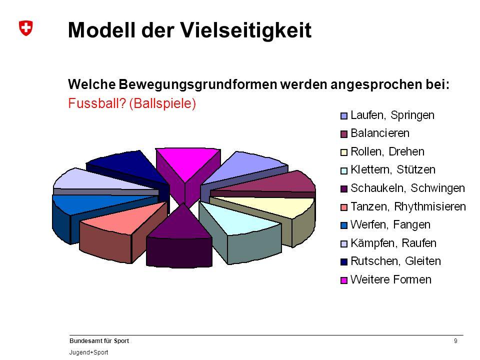 Modell der Vielseitigkeit
