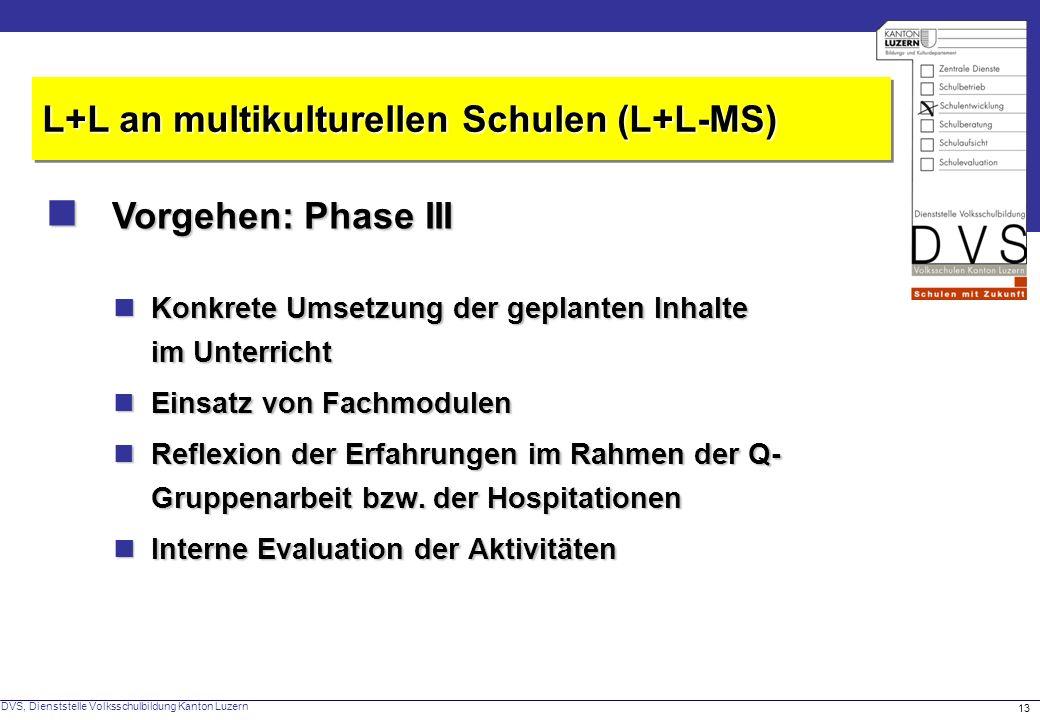  Vorgehen: Phase III L+L an multikulturellen Schulen (L+L-MS)