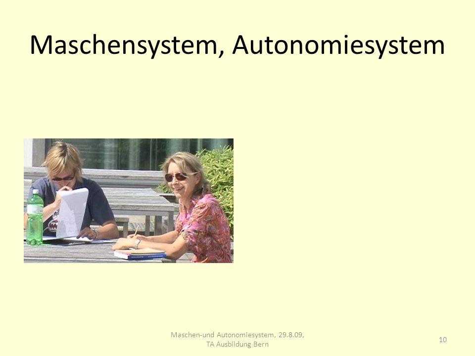 Maschensystem, Autonomiesystem