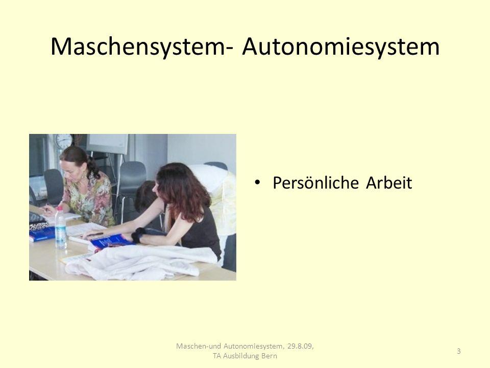 Maschensystem- Autonomiesystem