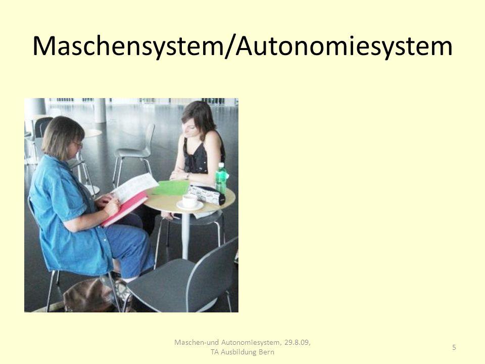 Maschensystem/Autonomiesystem