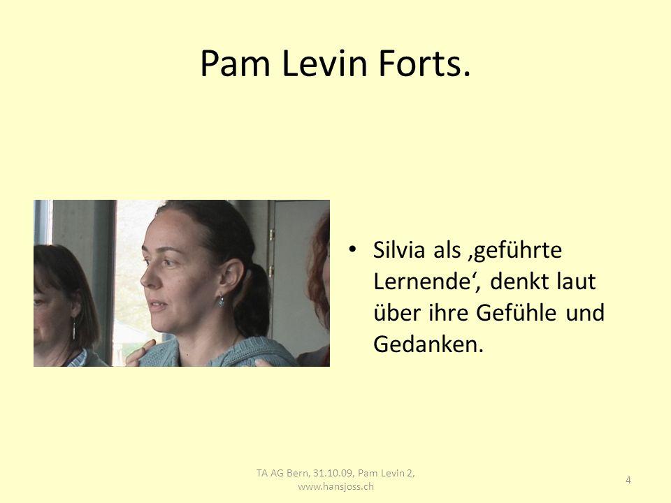 TA AG Bern, 31.10.09, Pam Levin 2, www.hansjoss.ch