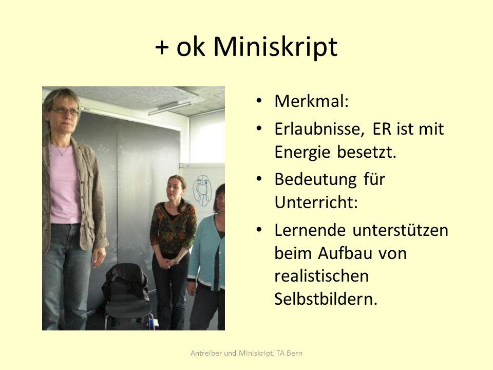 Antreiber und Miniskript, TA Bern