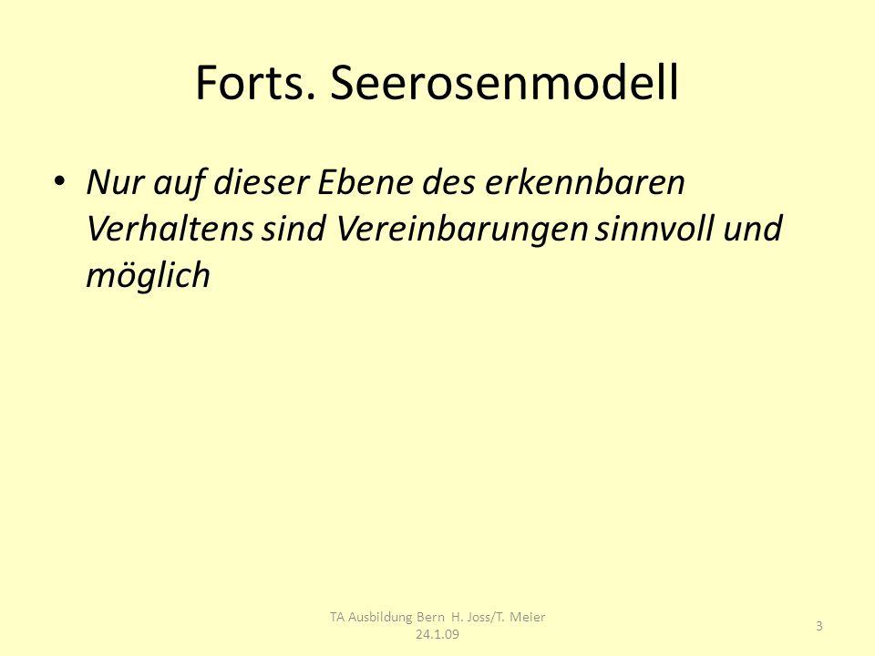 TA Ausbildung Bern H. Joss/T. Meier 24.1.09