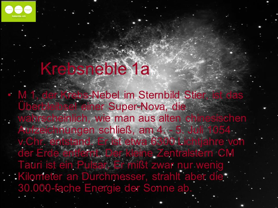 Krebsneble 1a