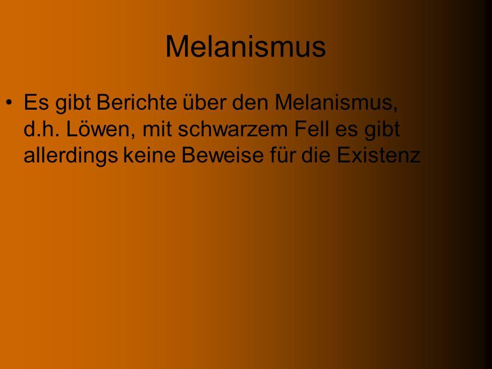 Melanismus Es gibt Berichte über den Melanismus, d.h.