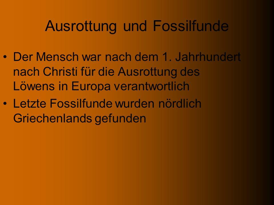 Ausrottung und Fossilfunde