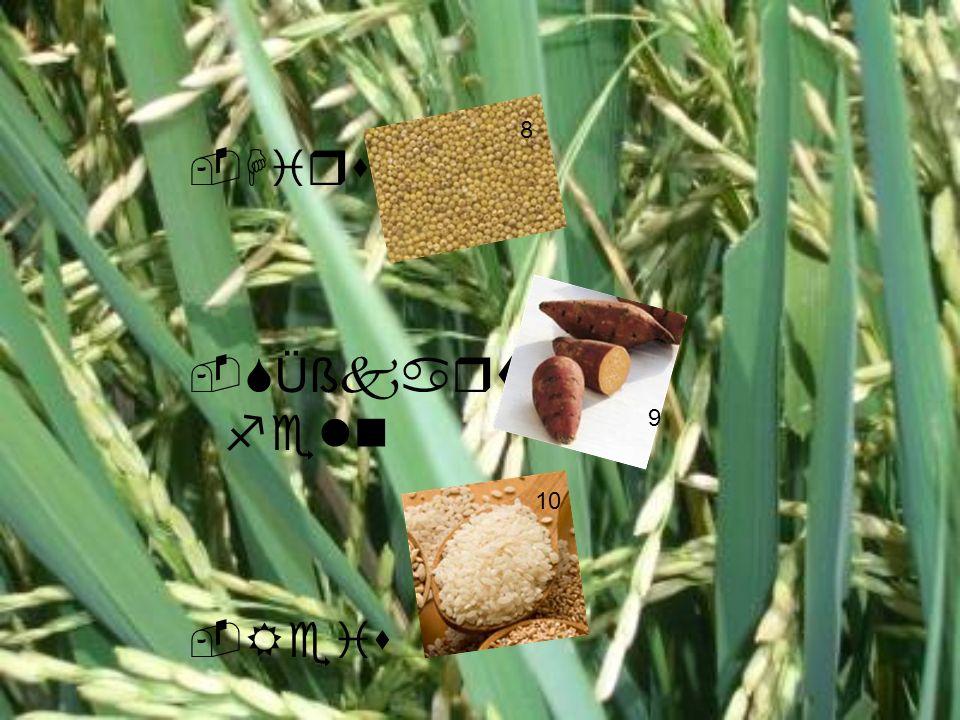 8 Hirse SÜßkartofeln Reis 9 Josi= Belieber 10