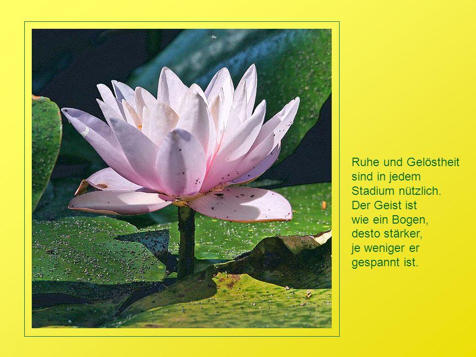 Ruhe und Gelöstheit sind in jedem. Stadium nützlich. Der Geist ist. wie ein Bogen, desto stärker,