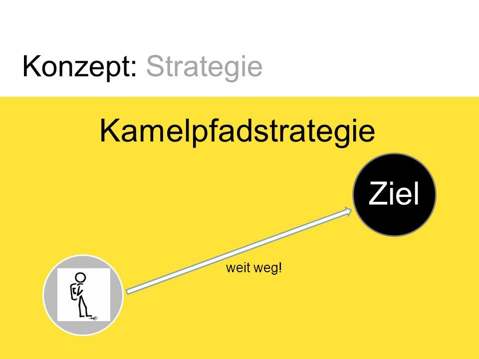 Konzept: Strategie Kamelpfadstrategie Ziel Start weit weg!
