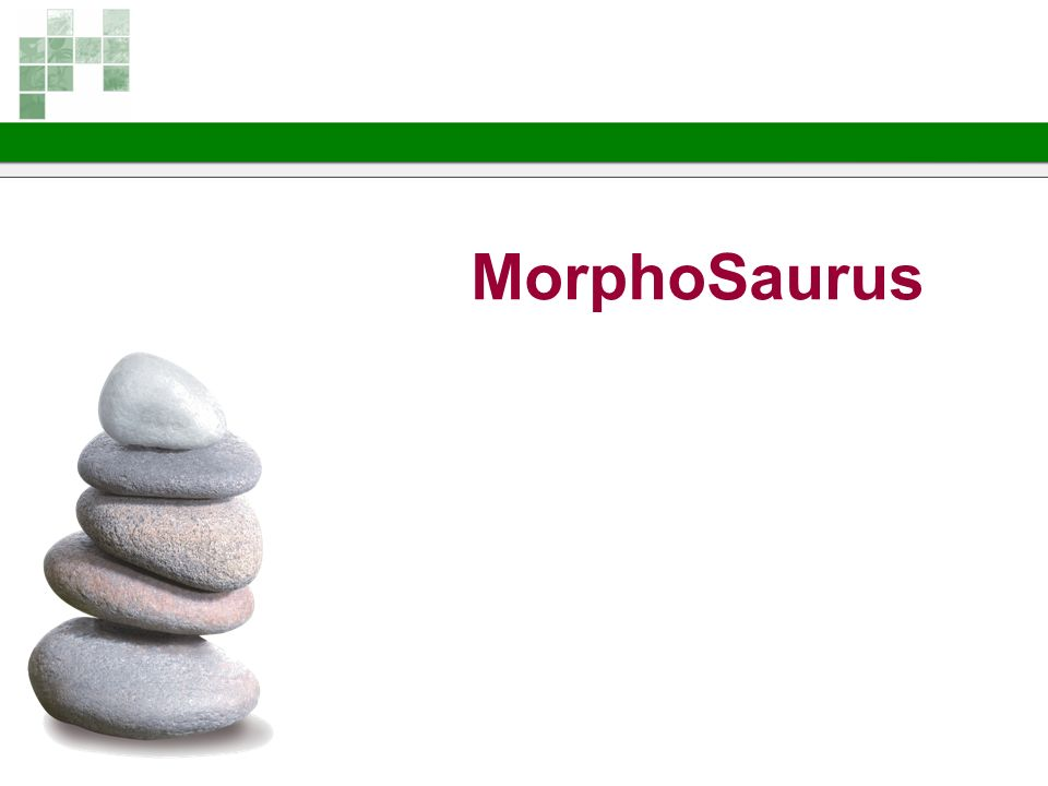 MorphoSaurus