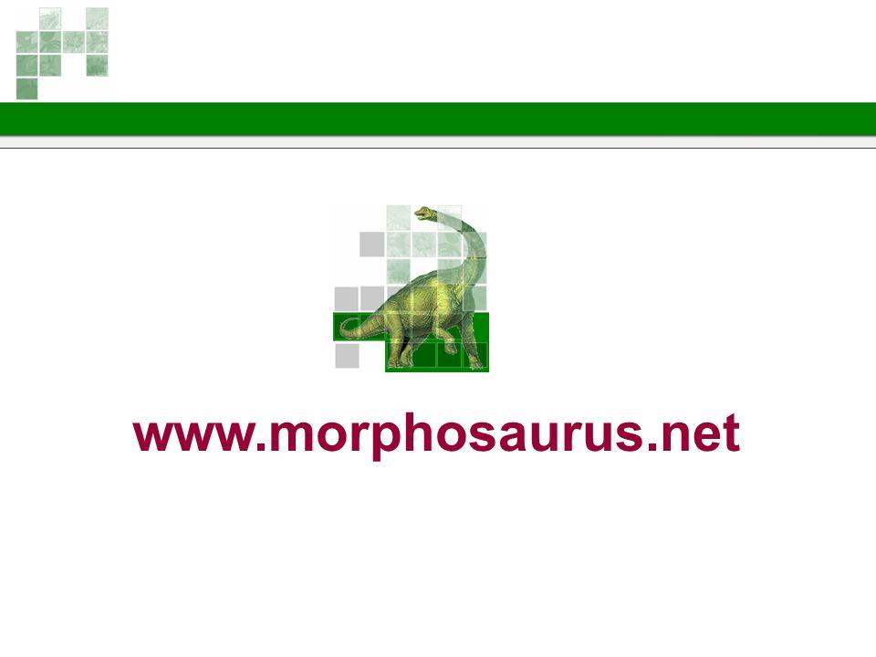 www.morphosaurus.net