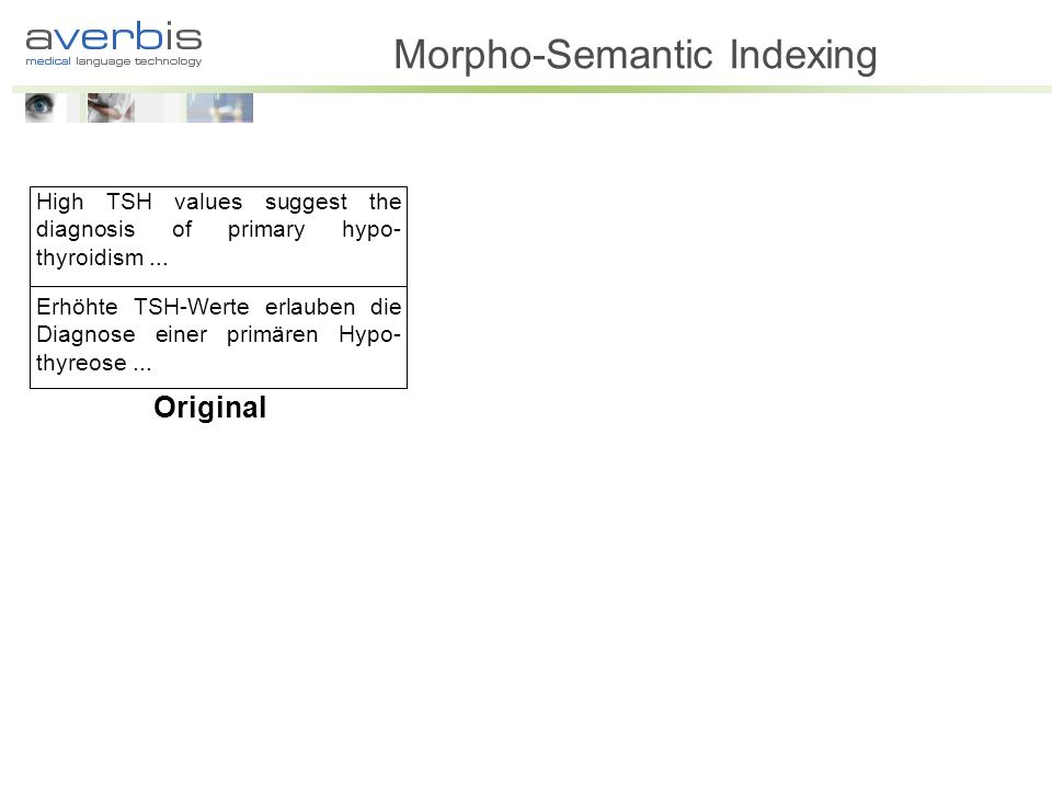 Morpho-Semantic Indexing
