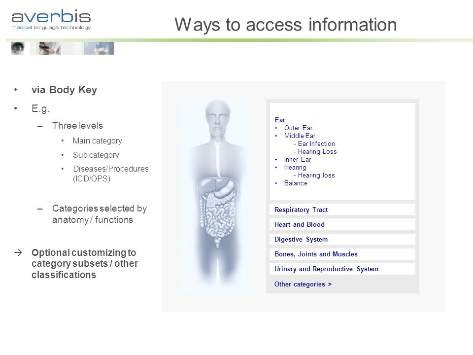 Ways to access information