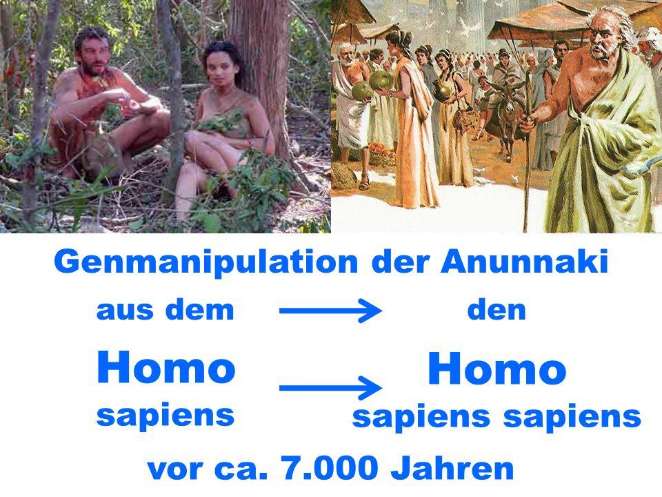 Genmanipulation der Anunnaki
