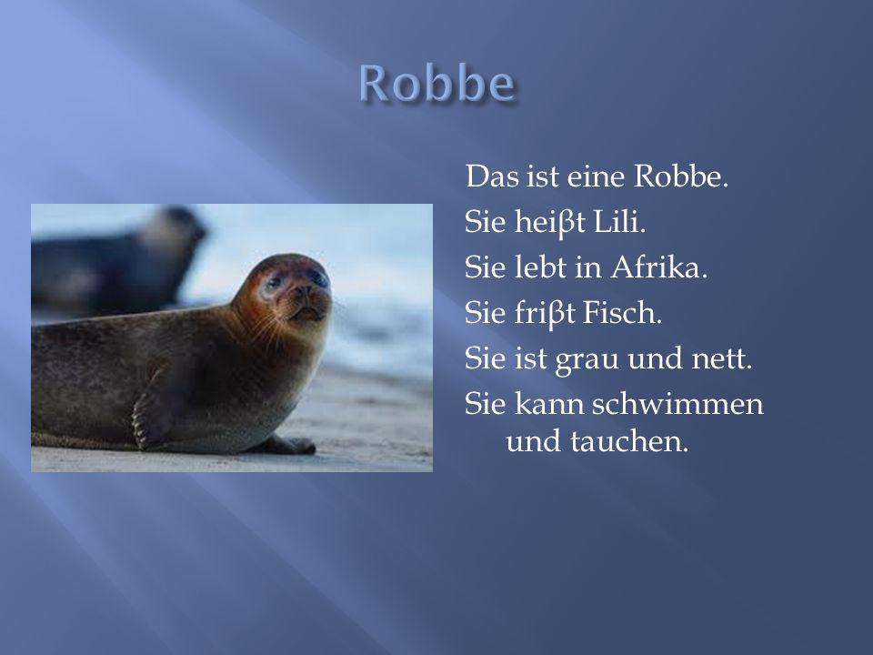 Robbe Das ist eine Robbe. Sie heiβt Lili. Sie lebt in Afrika.