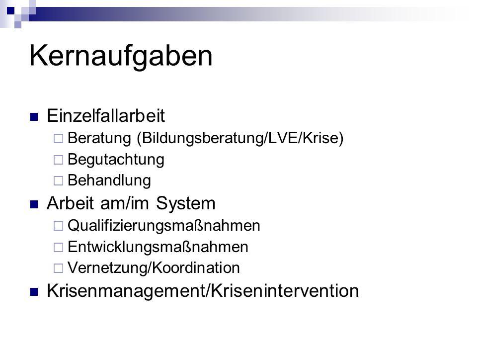 Kernaufgaben Einzelfallarbeit Arbeit am/im System