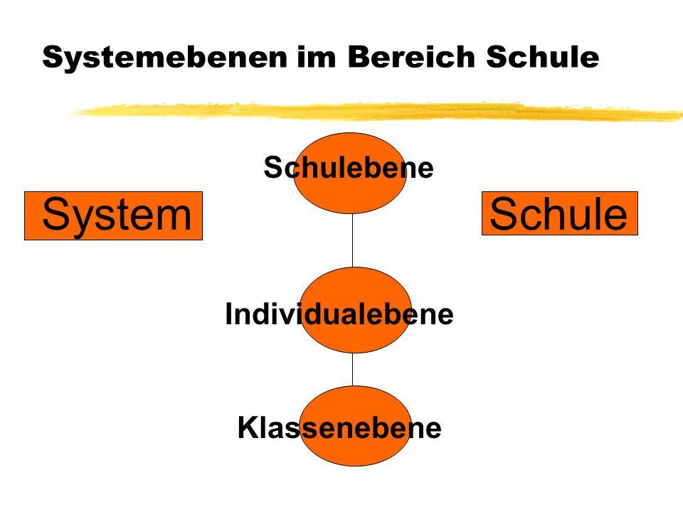 Systemebenen im Bereich Schule