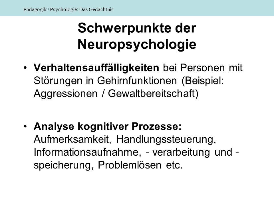 Schwerpunkte der Neuropsychologie