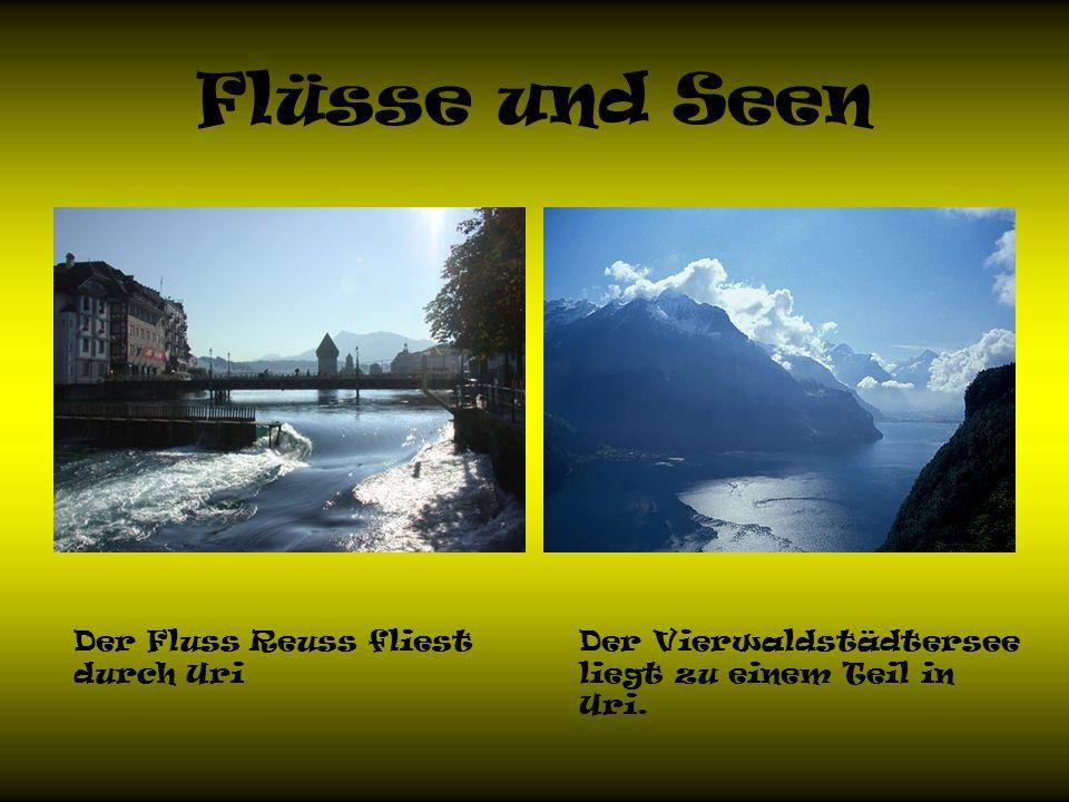 Flüsse und Seen Der Fluss Reuss fliest durch Uri