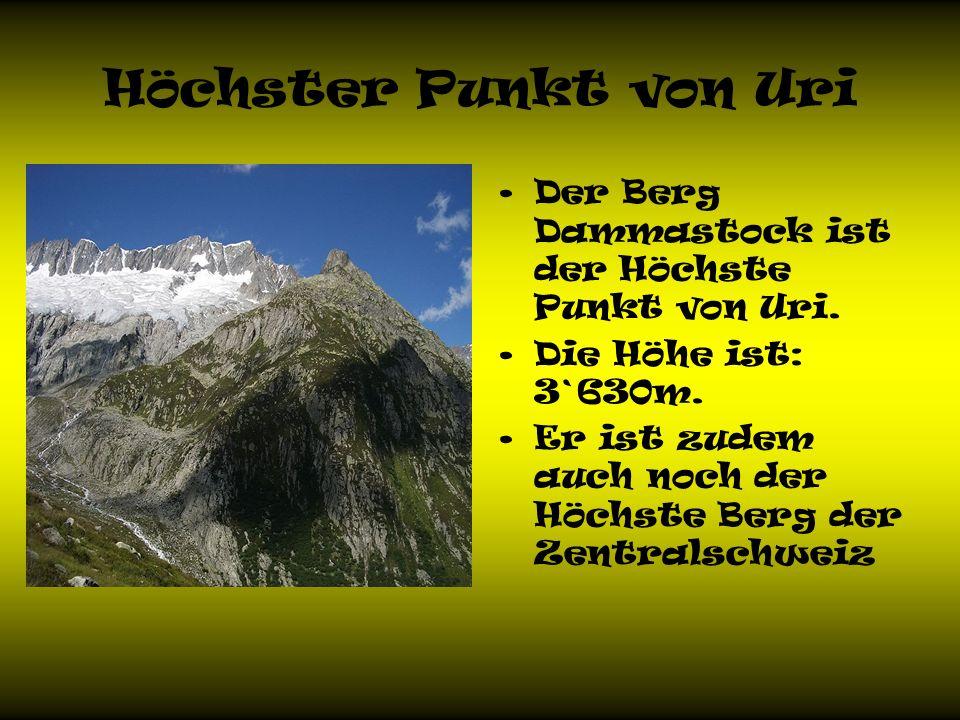 Höchster Punkt von Uri Der Berg Dammastock ist der Höchste Punkt von Uri. Die Höhe ist: 3`630m.