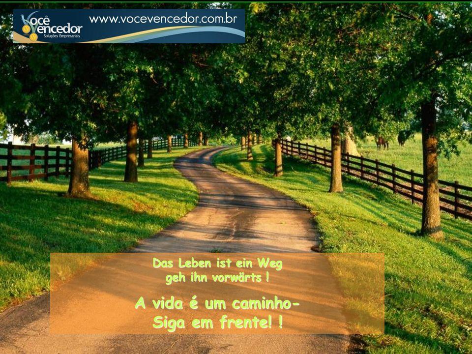 A vida é um caminho- Siga em frente! !