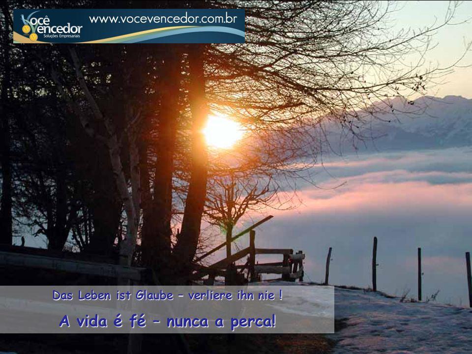 Das Leben ist Glaube – verliere ihn nie ! A vida é fé – nunca a perca!