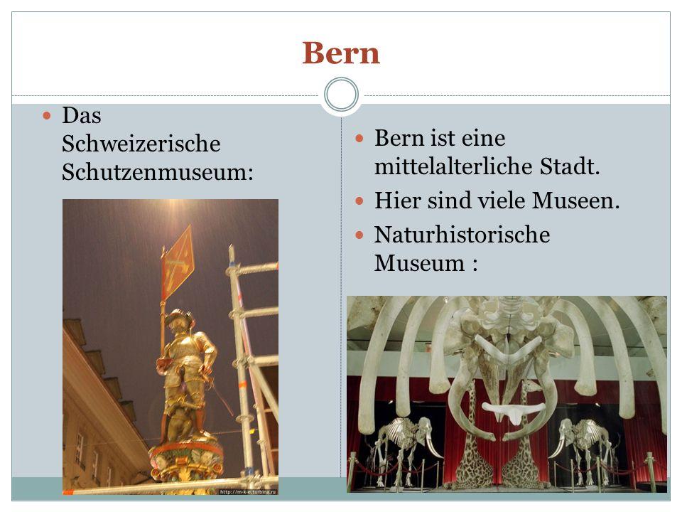 Bern Das Schweizerische Schutzenmuseum: