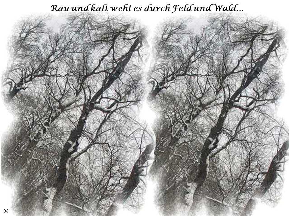 Rau und kalt weht es durch Feld und Wald…