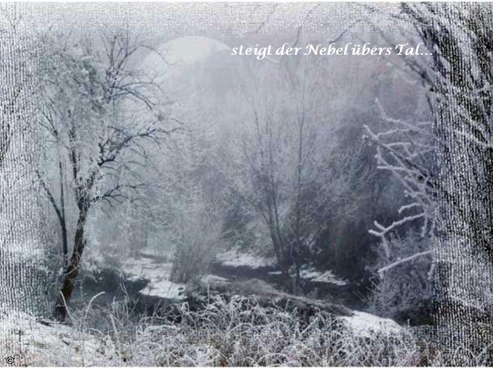 steigt der Nebel übers Tal…
