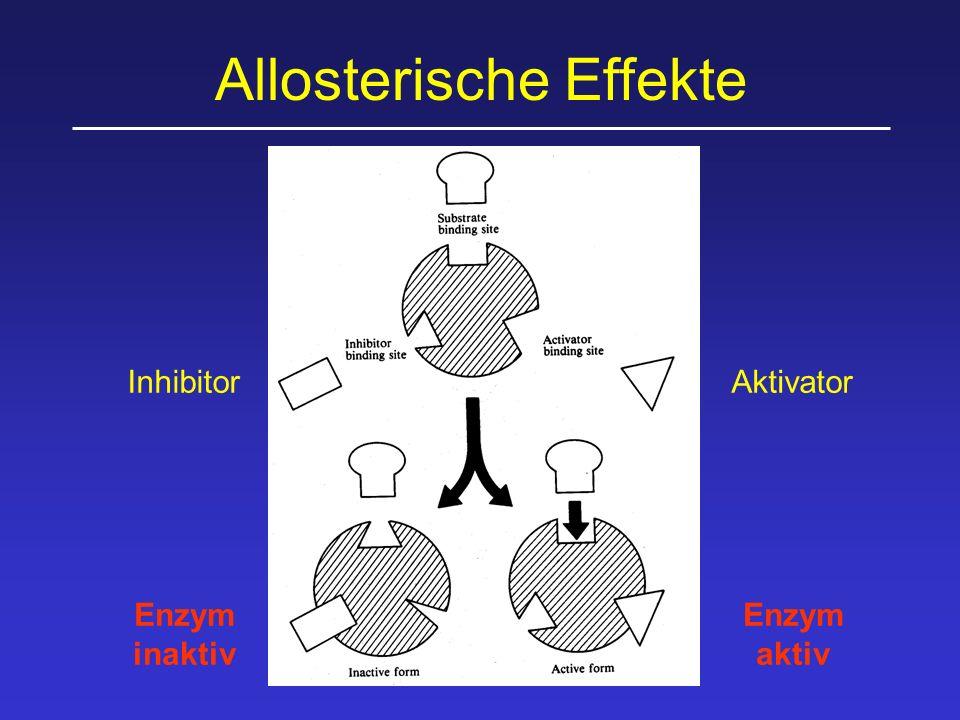 Allosterische Effekte