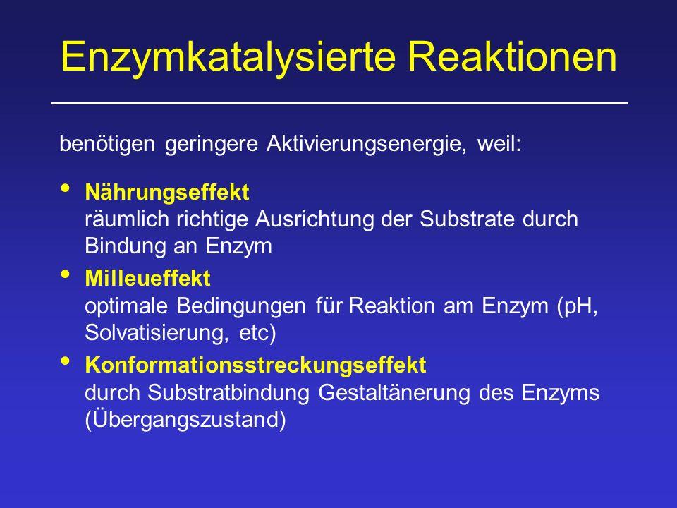 Enzymkatalysierte Reaktionen