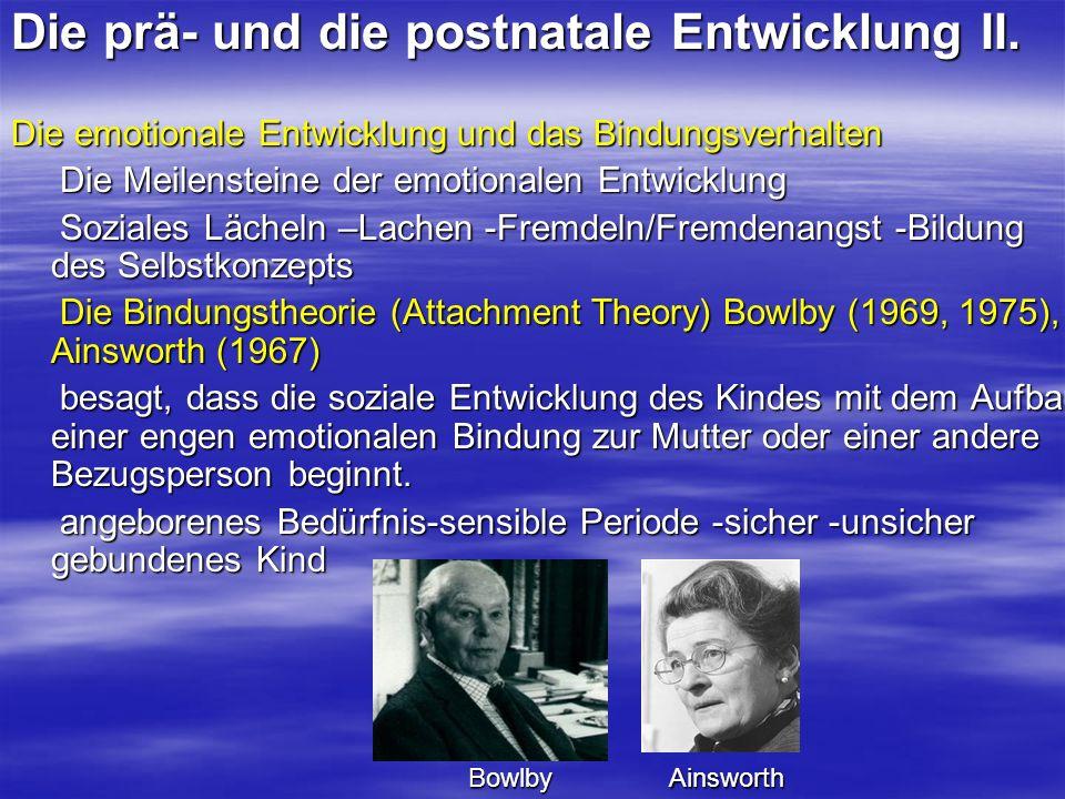 Die prä- und die postnatale Entwicklung II.