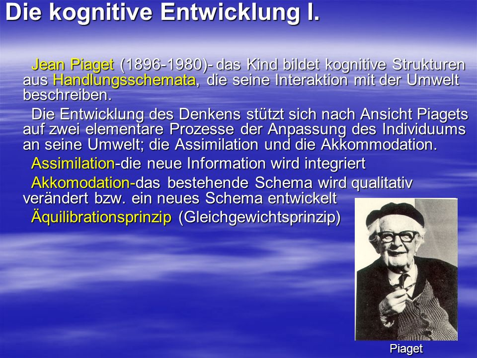 Die kognitive Entwicklung I.