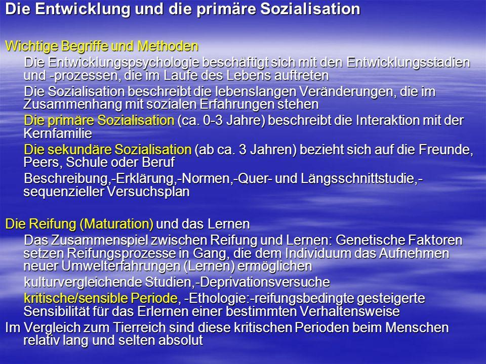 Die Entwicklung und die primäre Sozialisation