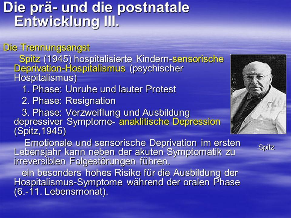 Die prä- und die postnatale Entwicklung III.