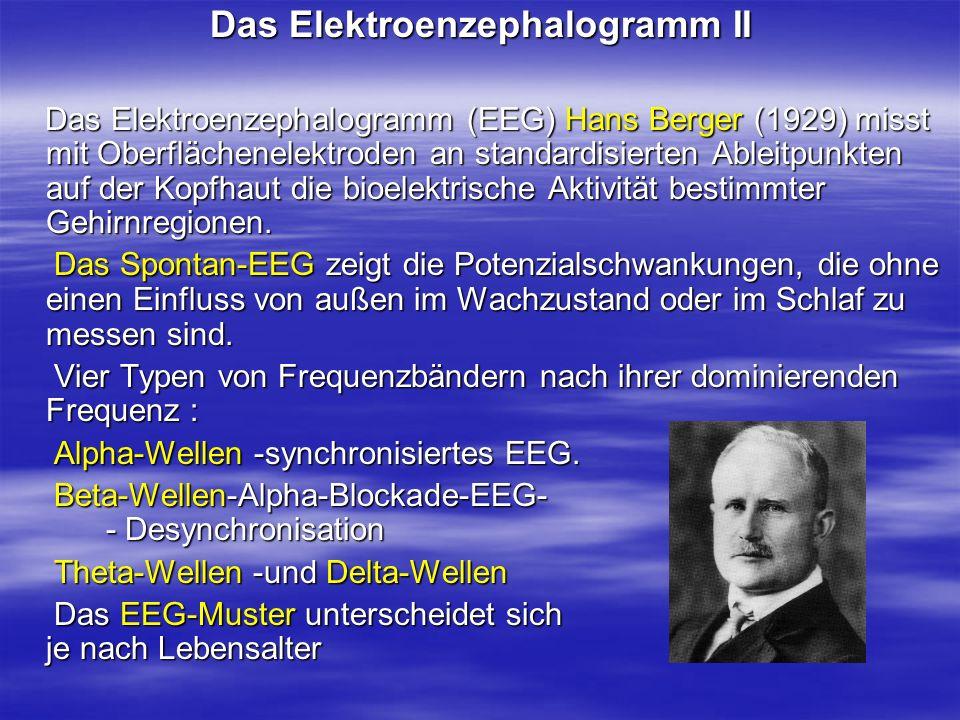 Das Elektroenzephalogramm II