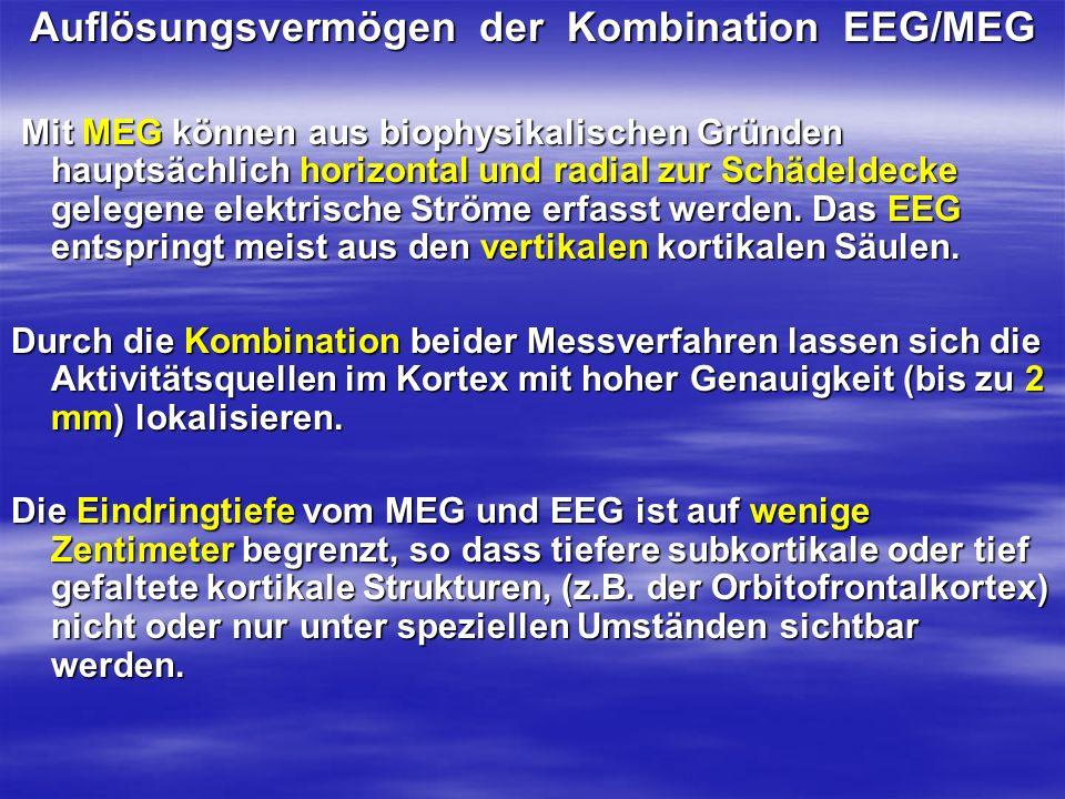 Auflösungsvermögen der Kombination EEG/MEG
