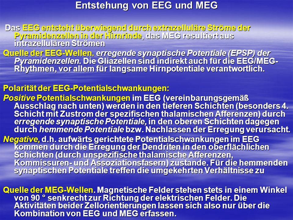 Entstehung von EEG und MEG