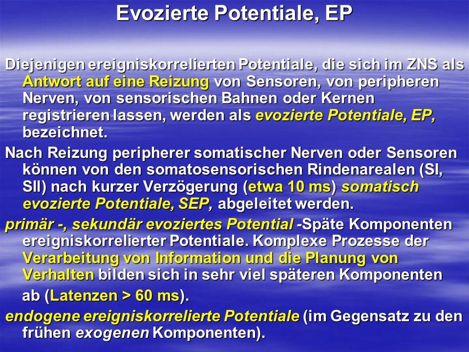 Evozierte Potentiale, EP