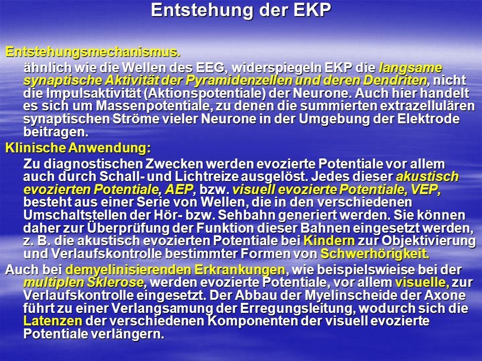 Entstehung der EKP Entstehungsmechanismus.