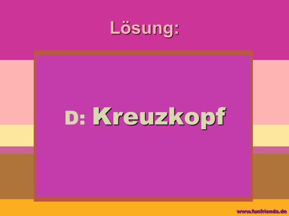 Lösung: D: Kreuzkopf