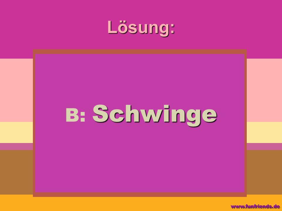 Lösung: B: Schwinge