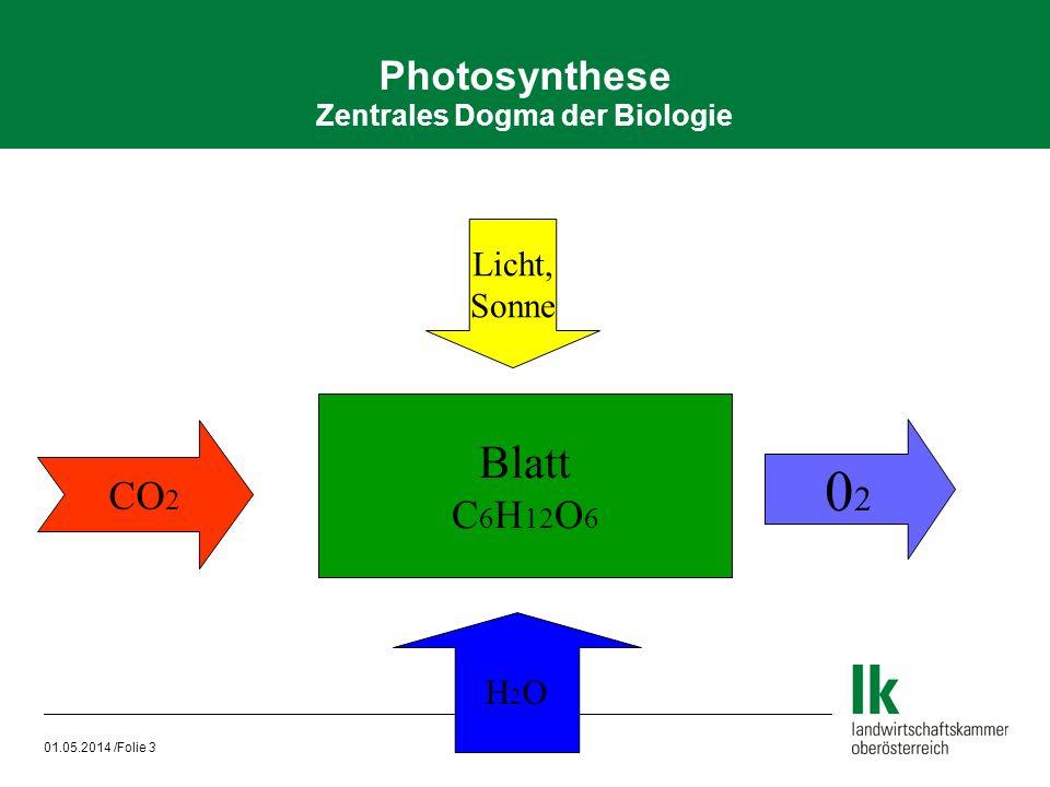 Photosynthese Zentrales Dogma der Biologie