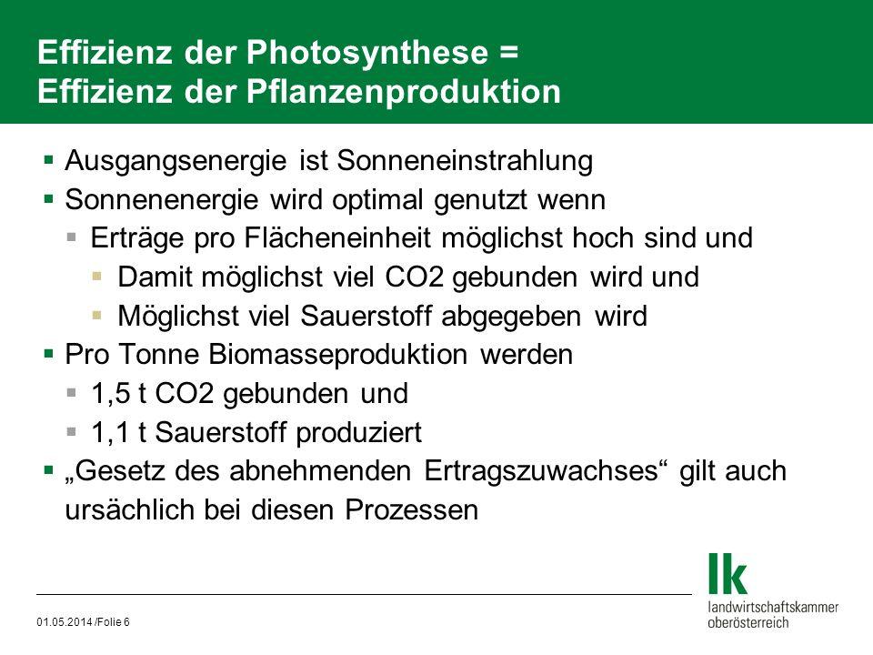 Effizienz der Photosynthese = Effizienz der Pflanzenproduktion