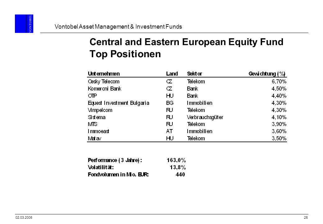 Central and Eastern European Equity Fund Top Positionen